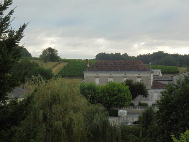 Vinodlingar på sluttningarna runt Verdelais.