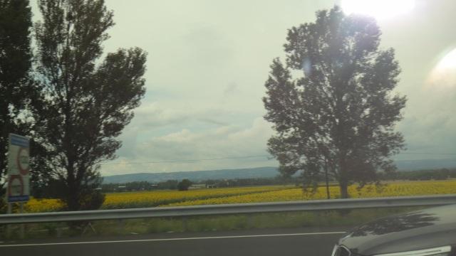 Frankrikes natur runt Toulouse.