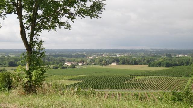Landsbygden utanför Verdelais.